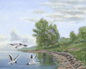 Estuary Gulls Oil Painting