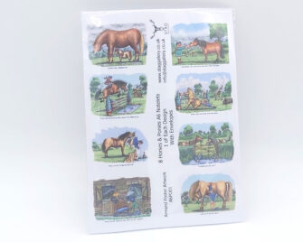 Horses & Ponies A6 Notelets Pack Cover